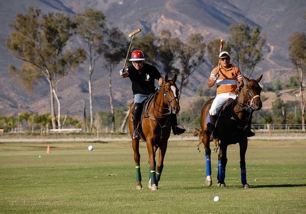 Chris Erskine plays polo