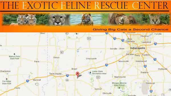 The top of the website of the Exotic Feline Rescue Center in Center Point, Ind., about 60 miles southwest of Indianapolis.