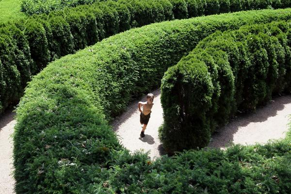 The Maze Garden is a popular feature at the Morton Arboretum.