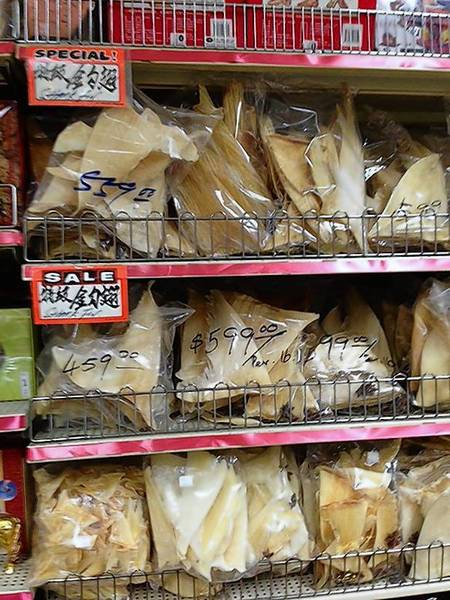 Shark fins for sale at nearly $600 a pound at a shop in L.A.'s Chinatown. As of Monday, sale or possession of the delicacy will be illegal.