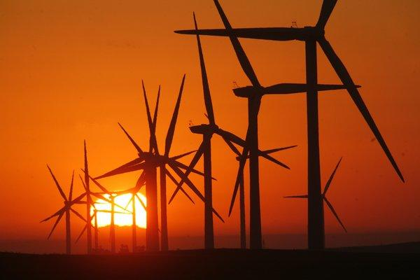 Sunrise behind wind turbines in California, athough these aren't among those Siemens shut down after a blade broke in Imperial County.