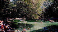 Florida Springs Guide: Wekiwa Springs State Park