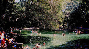 Florida Springs Guide: Wekiwa Springs State Park