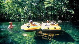Florida Springs Guide: Ichetucknee Springs State Park