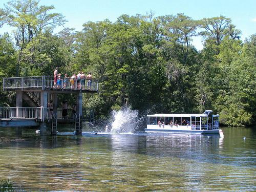 Scenic Boat Tour Orlando Sentinel