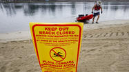 U.S. beach pollution dips but remains too high, report says