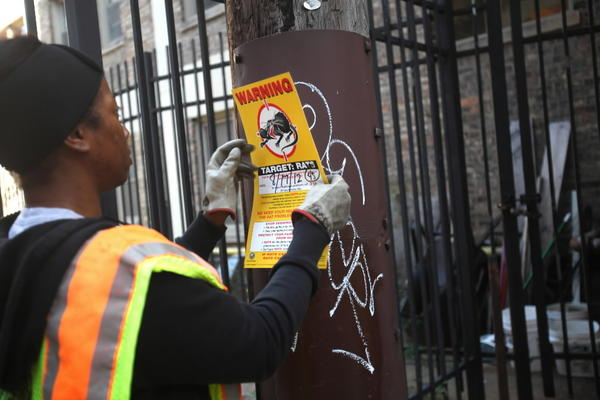 Terrah Cherry from Streets and Sanitation posts a sign about rats in an alley on the south side of Chicago as she answers calls from neighbors about rat problems in Chicago.