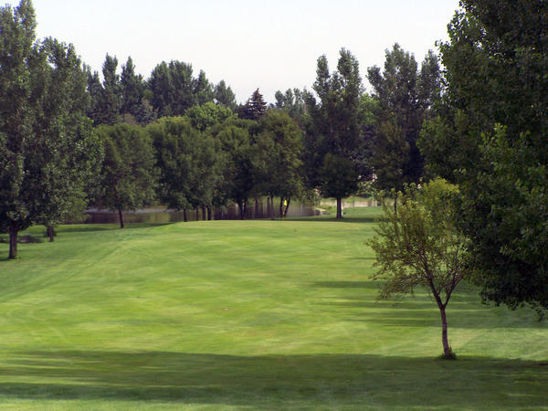 The Fisher Grove Country Club is privately owned, and it is contracted to manage and maintain the state park. A 10th hole was added due to flooding, so even if the James River floods golfers can still get in a full nine holes while visiting the country club or staying at the adjacent Fisher Grove State Park.