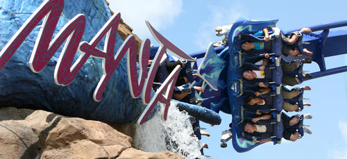 Riders on the notorious intense last row feel the full impact on the Manta flying coaster attraction at SeaWorld, in Orlando, Wednesday, May 13, 2009. The ray-themed coaster and aquarium is scheduled to open May 22.