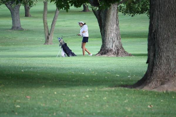 Naperville North golfer Taylor Arenson hopes that skill and consistency will take her to the state competition this fall.