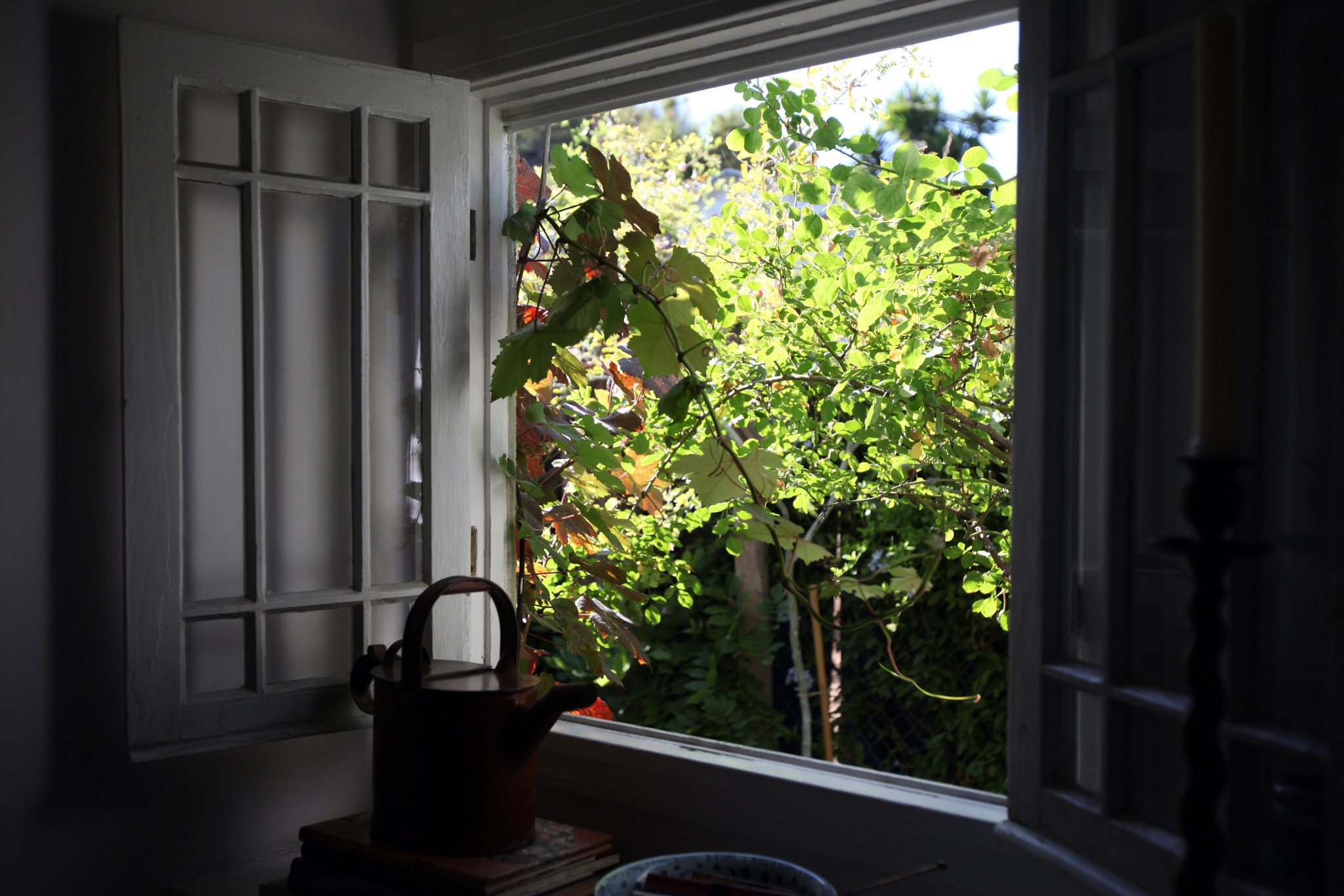 Gardening with window views in mind 4 tips from a design for Garden design windows 7