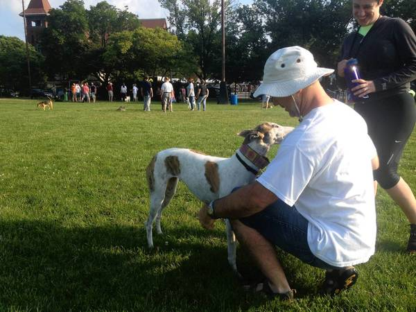 Brian and Ilene Kemerly play with their dog, Maya, on Saturday. Dogs will no longer be allowed at Ridgeland Common starting Aug. 4.