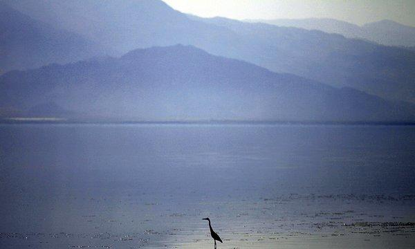 Geothermal power has been produced in the Salton Sea field since 1982.