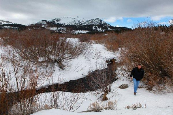 Former Mammoth Community Water District manager Greg Norby walks along the bank of Mammoth Creek.