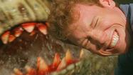 Before 'Sharknado,' Syfy birthed a swarm of terrible shark movies