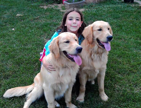 Chase and Chance, two young golden retrievers, are enrolled in a cancer study that will track their health for life. They are with Jocelyn Witter, the daughter of Amy Witter, who is the July Pet Lover of the Month.