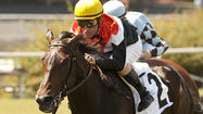 Marketing Mix wins Sunset Handicap at Hollywood Park