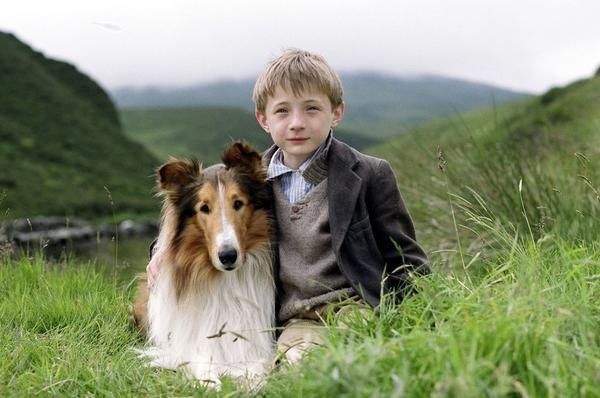 Jonathan Mason and Lassie star in the movie Lassie (2006).