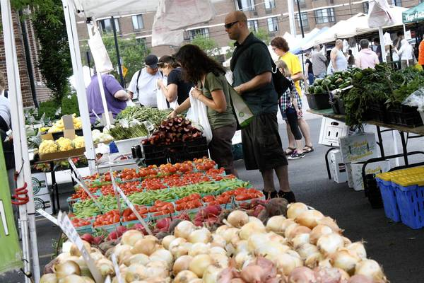 Skokie residents Gina DiBenedetto, 33, left, and Dylan Leggett, 37, shop for produce at Skokie's farmers market.