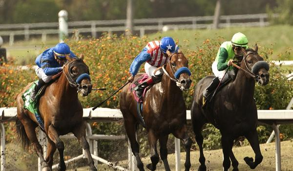 Den's Legacy is among the favorites to win the Oceanside Stakes on Wednesday during Del Mar's opening day.
