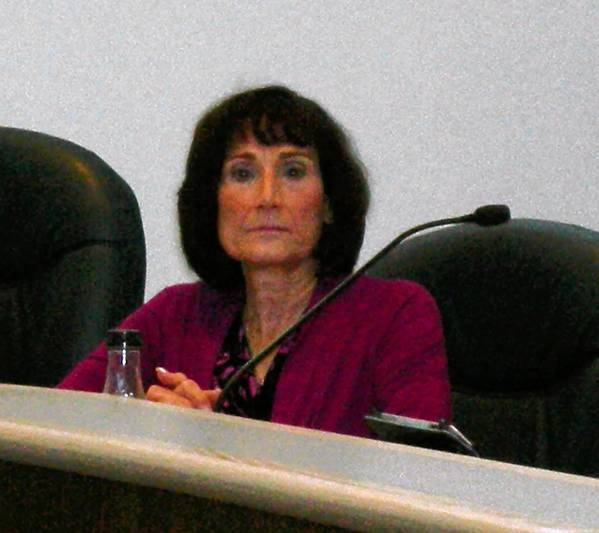 Woodridge resident Mary Anne Blair was appointed to village trustee on Thursday evening.