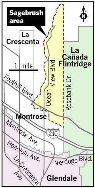"The following illustration shows the ""Sagebrush"" region, which falls in Glendale Unifieds boundaries. Parents who live in the area have fought for decades for the opportunity to enroll their children in La Caada schools. A group of citizens recently formed to initiate the process once again."