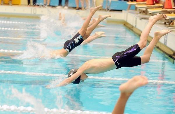 Stoneleigh Sharks Win Free State Swim League Trophy Meet Baltimore Sun