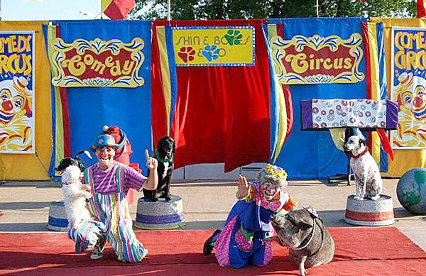Skin & Bones Comedy Circus performs throughout the week at the Washington County Ag Expo.