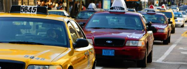 Des Plaines officials have decided to scale back on the number of new taxicab licenses it issues in the city.