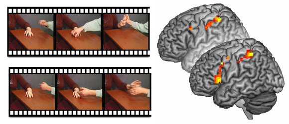 Movie clips were used to test whether psyc