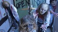 Pictures: The Walking Dead at Halloween Horror Nights