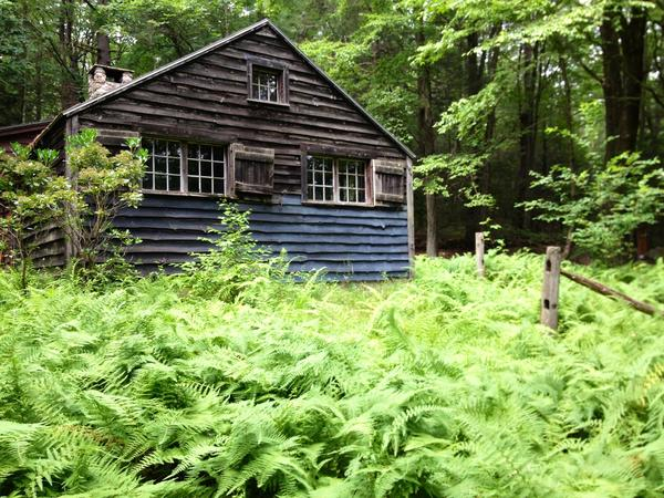 The Canton Land Conservation Trust's Capen Cabin along the Smith Tree Farm trails.