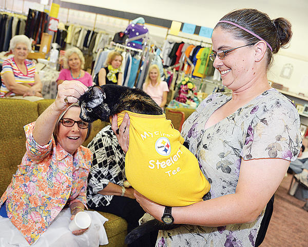 Frankie models a Pittsburgh Steelers T-shirt Sunday with Jeanette Lewis at a fashion show fundraiser for the Cumberland Valley Animal Shelter. The shelter's thrift store in downtown Chambersburg hosted the event.