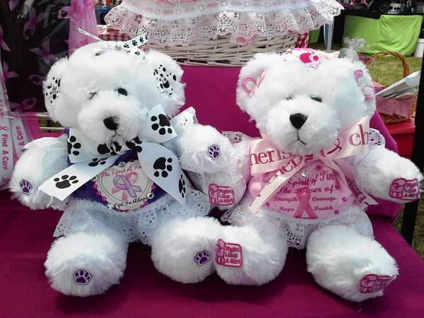 "These kind of Teddy bears will be among the gift items on sale at the Spirit of Pink charity's first major event called ""Ladies Night Out: A Shop Till You Drop Extravaganza"" from 5 to 9 p.m. Thursday, Aug. 8, at the Orland Park Civic Center, 14750 Ravinia Ave. in Orland Park."