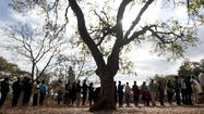 Zimbabwe election: Voters line up for poll plagued with doubt