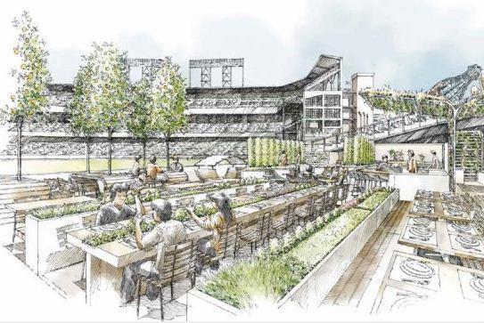 Edible garden at AT&T Park