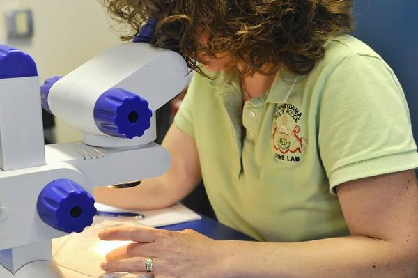 Sarah Kineer of the Pennsylvania State Police Crime Lab in Greensburg, PA examines blood stains under a microscope.