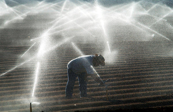 A farm worker in the Imperial Valley adjusts sprinkler heads spraying water that comes from the Colorado River. A water deal between Imperial Valley and the cities of San Diego County has been approved by a judge.