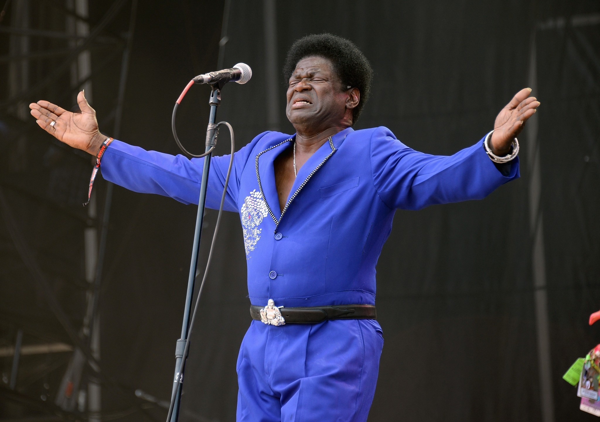 Photos: 2013 Lollapalooza Day Two - Charles Bradley