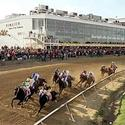 Menacing Dennis leads the Preakness field to the first turn