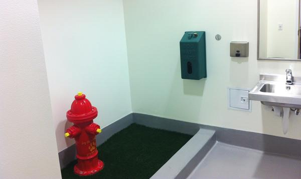 San Diego Airport's indoor pet relief area is located in Terminal 2 right next to restrooms for owners.