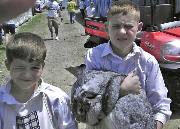 Tylor Billmyer, 14, right, and his brother, Aiden, 10, brought rabbits to the Berkeley County Youth Fair Monday from the four breeds they raise at their familys DNJ Farm outside Martinsburg, W.Va.