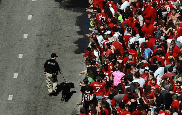A Transportation Security Administration K-9 unit is on patrol as thousands of fans gather for the Blackhawks' Stanley Cup parade and rally in downtown Chicago in June.