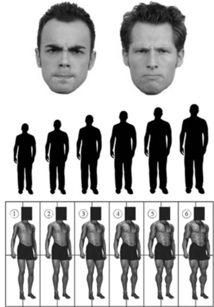 Participants in a UCLA study published in PLOS One were asked to match a face to a body or silhouette.