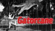 'Gatorcane' official trailer