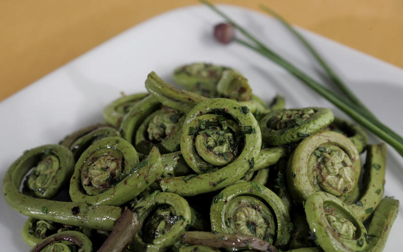 Fiddleheads with fresh herbs