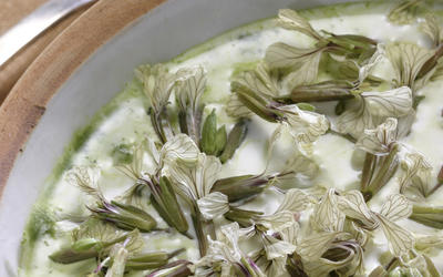 Arugula-arugula flower soup