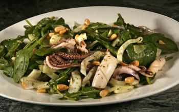 Squid salad with shaved fennel and arugula