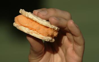 Hazelnut meringues with orange sherbet