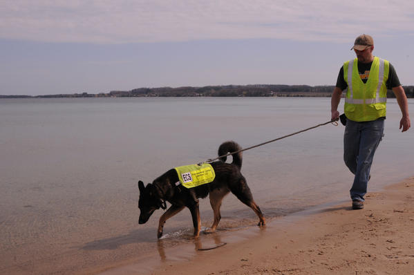 Scott Reynolds, part owner of Canine Environmental Services, and canine Sable check out a beach in Traverse City.